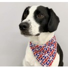 Proper Dog GB Union Jack Print Bandana - Large