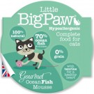 Little BigPaw Ocean Fish - Dogtor.vet