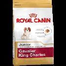 Royal Canin Puppy Cavalier King Charles - Dogtor.vet