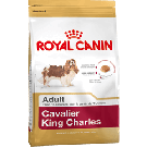 Royal Canin Adult Cavalier King Charles - Dogtor.vet