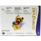 Stronghold Toy Dogs - Dogtor.vet