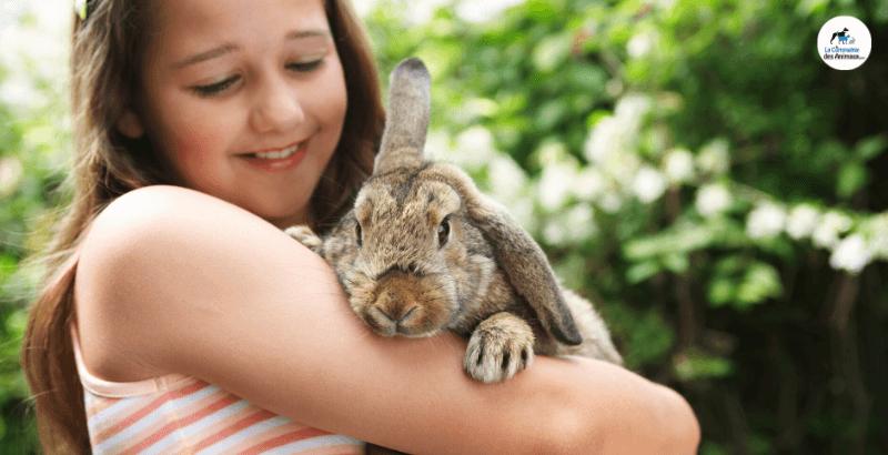 Le stress chez le lapin