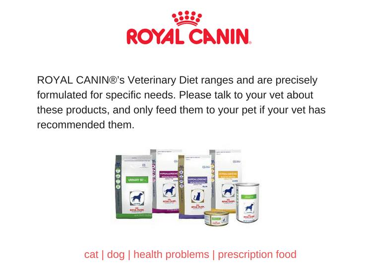 RC vet diet summary