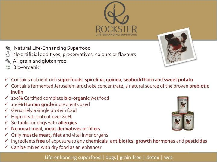 rockster food summary