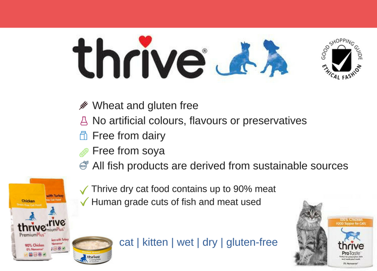 Thrive food summary