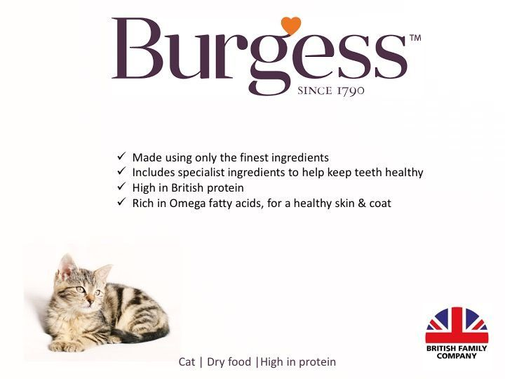 Burgess cat food summary